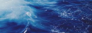 海 SEA